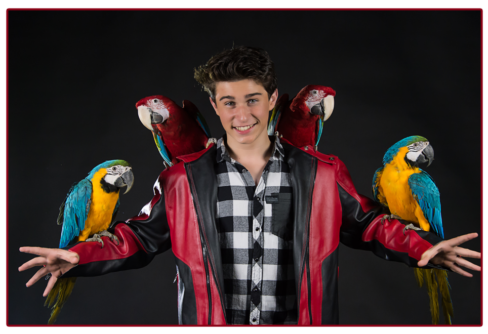 Alfredo Lorenzo Magic Parrots